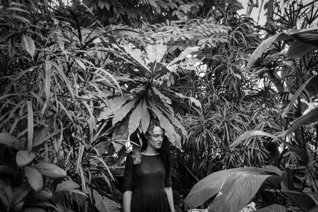 palmhuset5