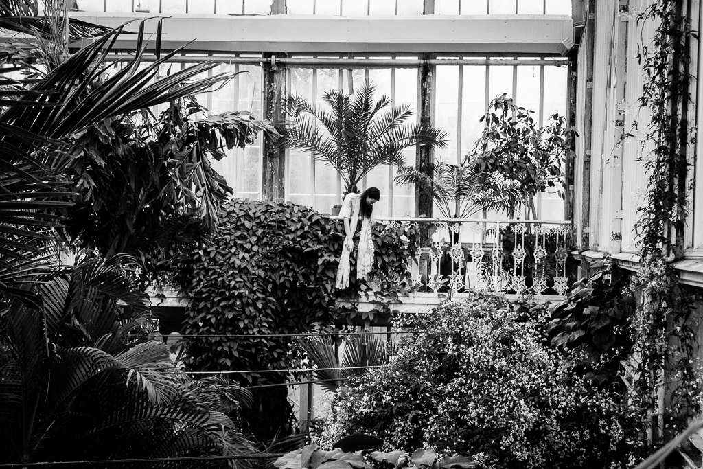 palmhusetdel3