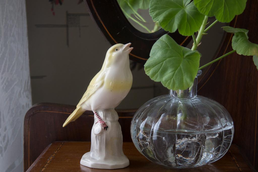 porslinsfågel